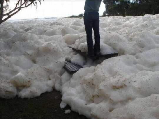 Amazing-Sea-Foam-On-The-Coast-of-Australia2
