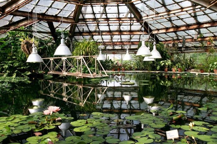 Питерский ботанический сад