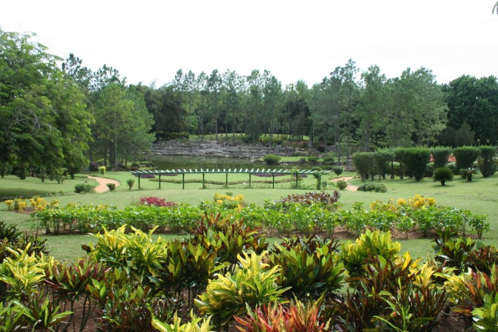 Национальный ботанический сад Кубы