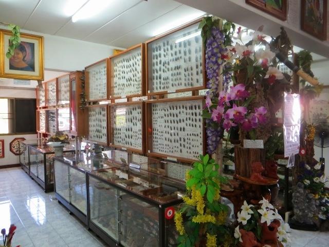Музей насекомых