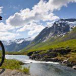 Хардангер-фьорд — 7 фактов о самом популярном месте Норвегии