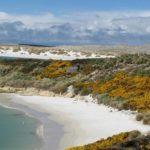 Достопримечательности Фолклендских островов — 6 удивительных фактов