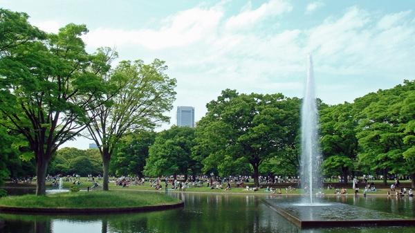 Парк Йойоги Токио