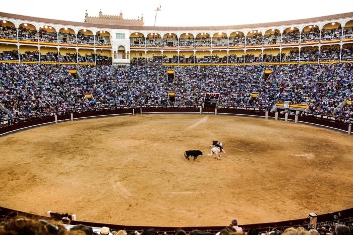 Арена Лас-Вентас (Мадрид)