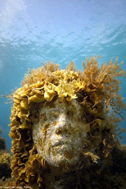 искусственный риф2